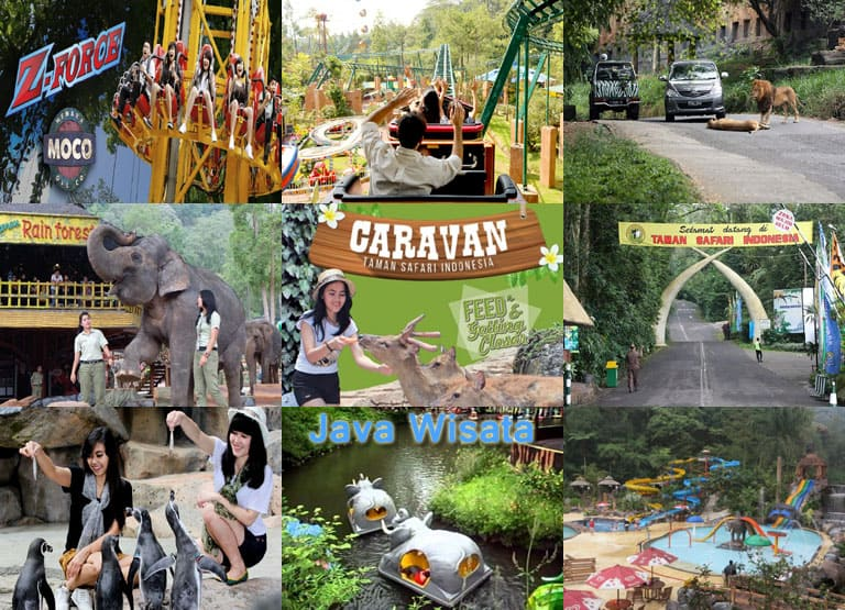 Paket Family Gathering Taman Safari