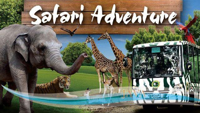paket tour taman safari, paket wisata taman safari
