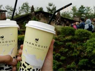 farm house lembang, java wisata, tour bandung, wisata bandung