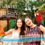 paket wisata bali bird park