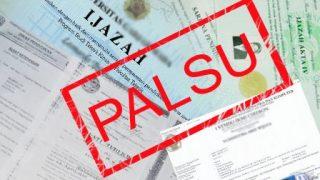 10 Hal Ini Mungkin Jadi Penyebab Visa Anda Ditolak