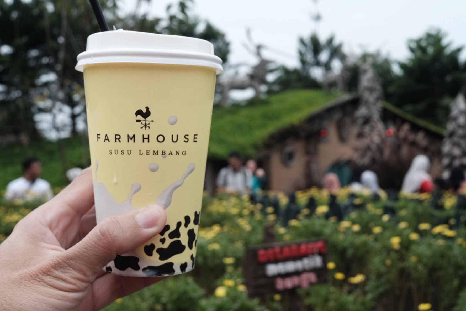 Disini !! Informasi Lengkap Farm House Lembang Bandung