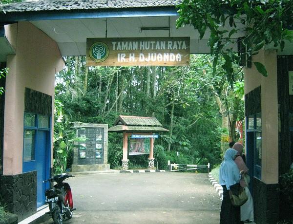 taman hutan raya juanda, tahura, wisata bandung