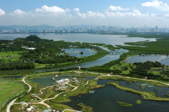 Di Hongkong Wajib Kunjungi Wetland Park