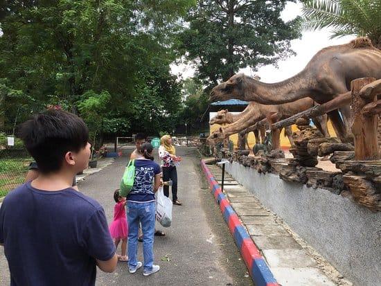 Kebun Binatang Johor di Malaysia
