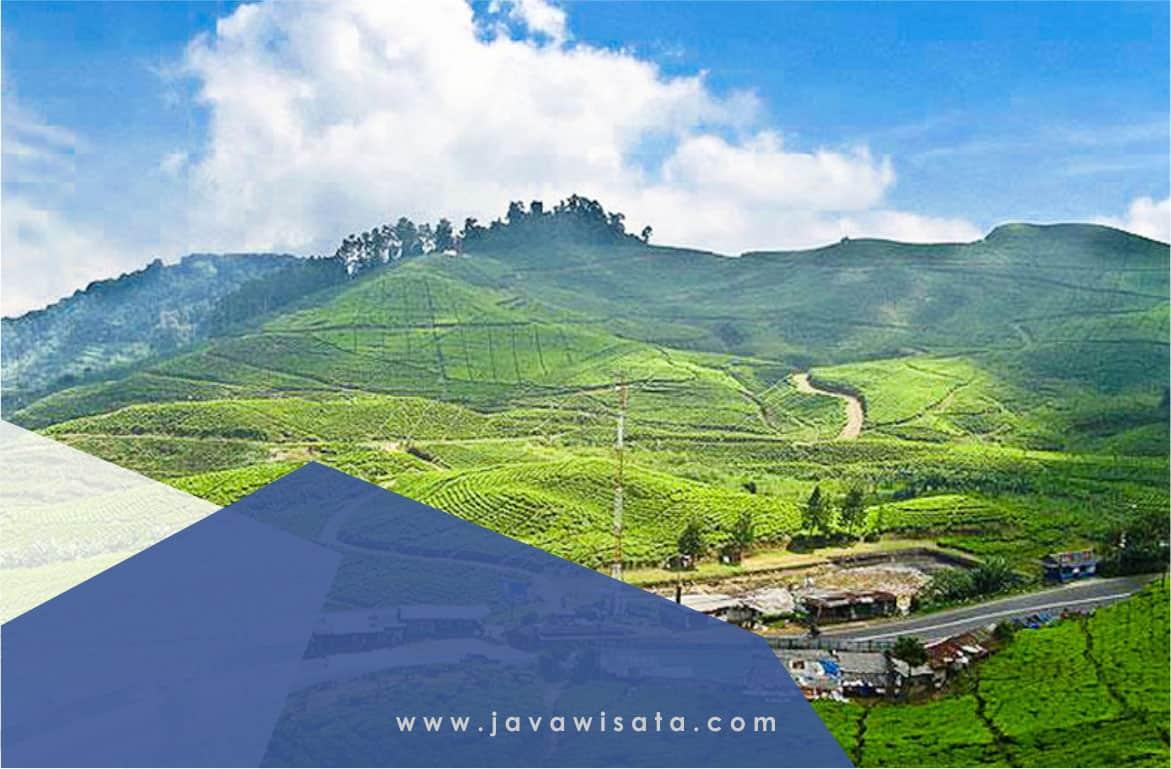 Paket Tour Jakarta Puncak Bandung