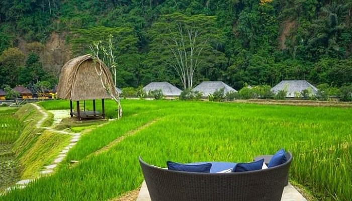 Wisata Bukit Asmara Bali