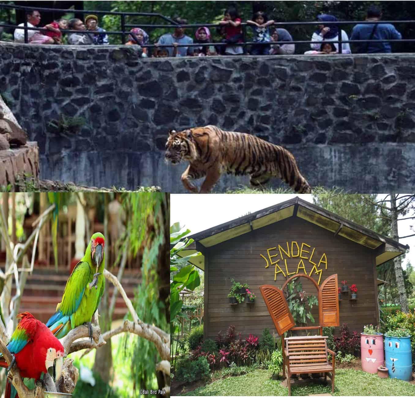 Wisata Anak Di Bandung, Wajib Untuk Dikunjungi Saat Liburan Tiba