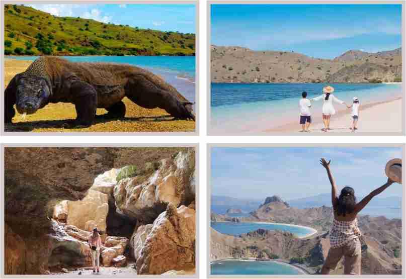 Open Trip Pulau Komodo