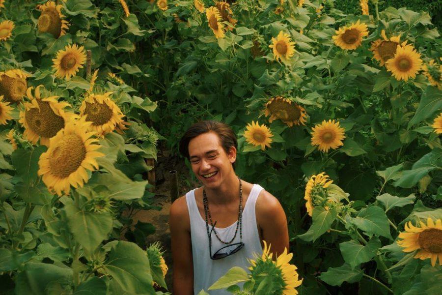 Berwisata di Taman Bunga Matahari Bantul
