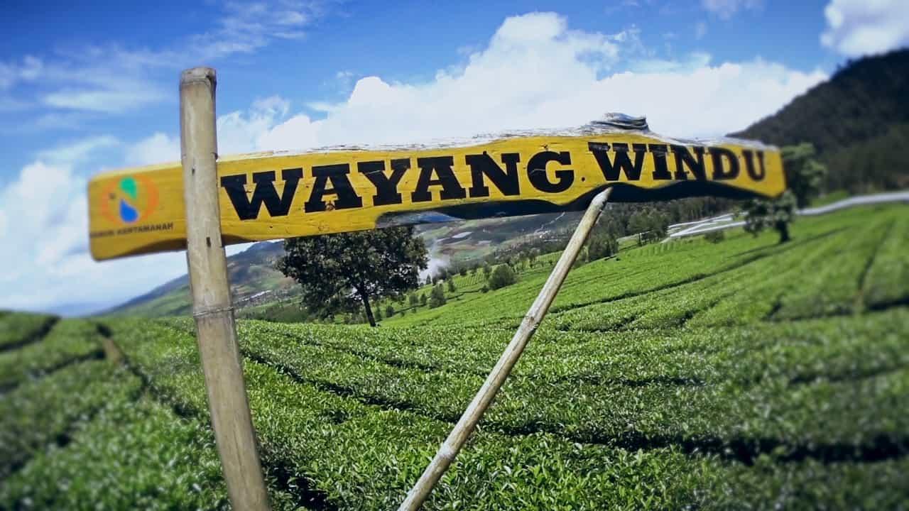 Wisata kebun teh di Wayang Windu Panenjoan Pangalengan