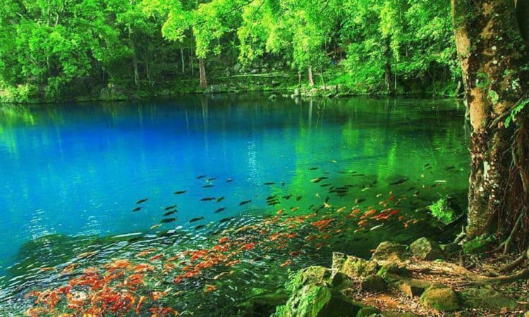 Indahnya Sebuah Telaga Biru, Situ Cicerem