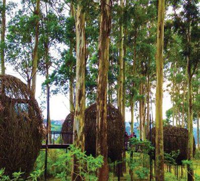 Dusun Bambu, Wisata Bandung, Tour Bandung
