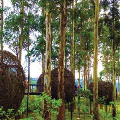 5 Tempat Wisata Terfavorit di Bandung