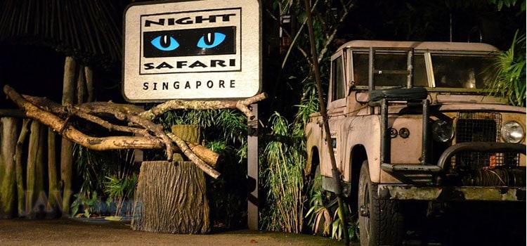 Intip Kehidupan Malam Satwa di Night Safari Singapore